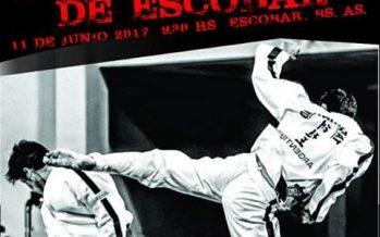 """El domingo se hará el Torneo de Taekwondo """"Ciudad de Escobar"""""""